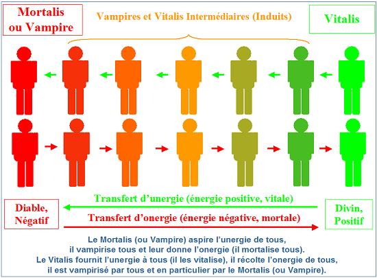 mortalis-et-vitalis-vampires-sont-la-racine-de-tous-les-maux
