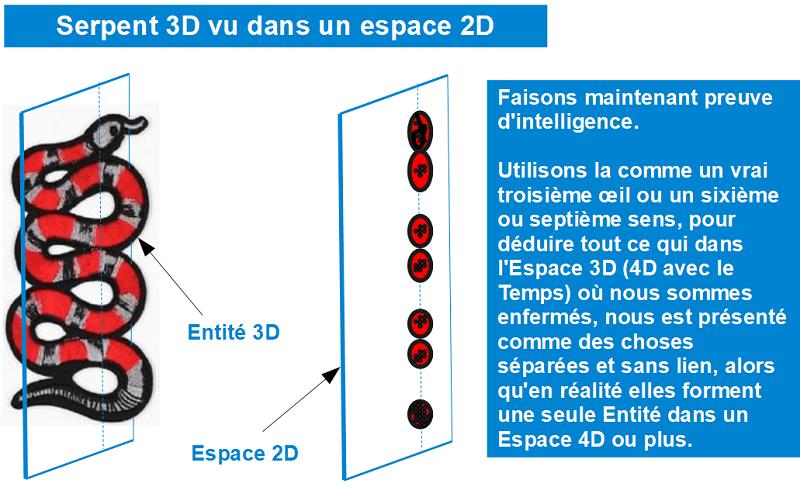 serpent-3d-vu-dans-espace-2d-1
